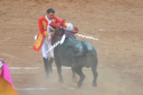 牛の突進が闘牛士を襲うハプニング