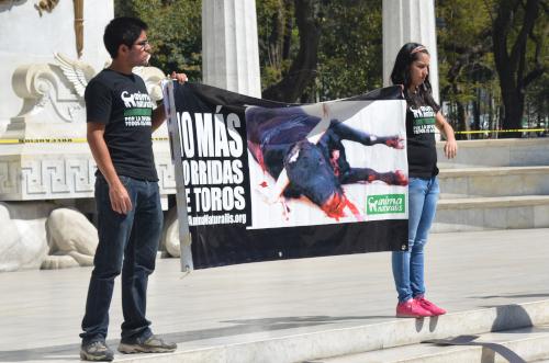 牛の残酷な写真を掲げる動物愛護団体