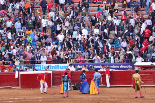 闘牛士へ白いハンカチを振る観客