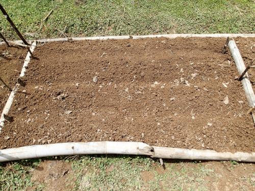 野菜を栽培するための家庭菜園