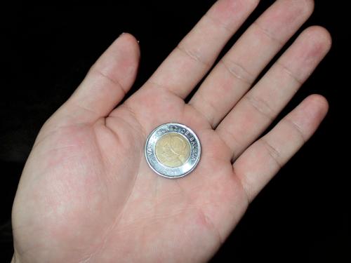 【青年海外協力隊のエピソード】なぜ途上国で生活保護を受けている女性から1ドルを握らされたのだろう?