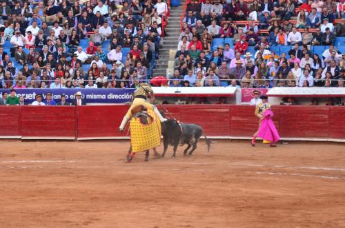 牛に襲われるピカドール