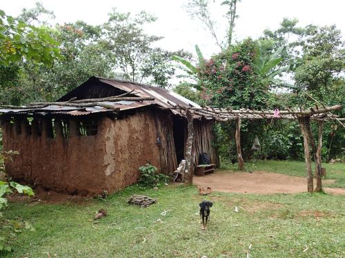 山奥の村の民家