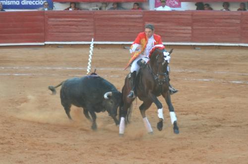 牛の突進をかわす闘牛士