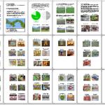 中米3ヶ国の野菜と料理の写真103枚!第七号農業活動レポートが完成した