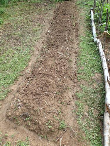 畝の周りを掘る