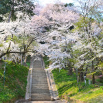 長野県飯田市飯沼神社