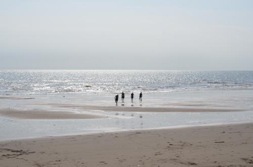 ラス・タブラスの海岸