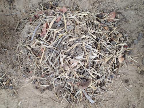 材料を混ぜた有機肥料のもと