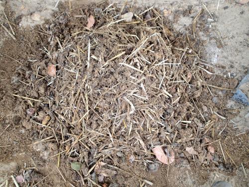 水と土を混ぜた有機肥料