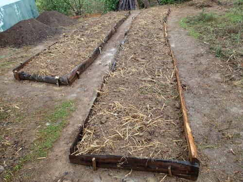 野菜栽培用の畝