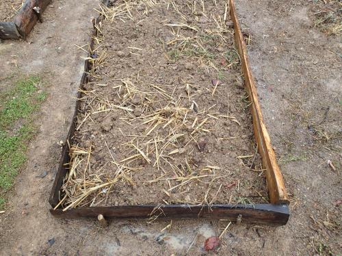 木枠でできた畝