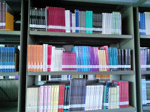 バスコンセロス図書館の本