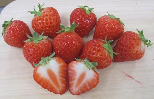 苺の断面写真