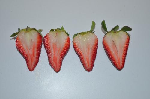 メキシコのイチゴの断面