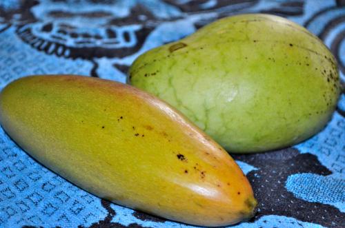 2種類のマンゴー