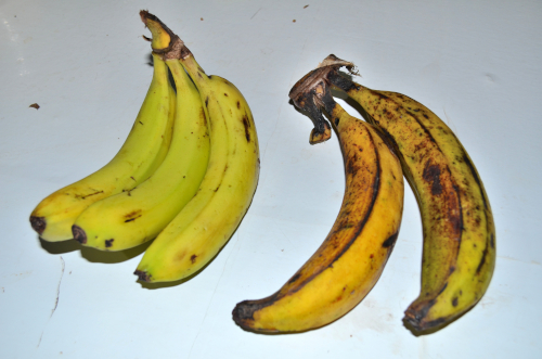 バナナとプラタノ