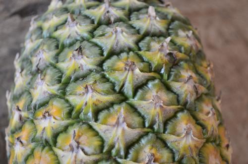 ちょうどよい熟度のパイナップル
