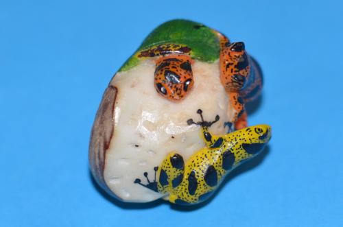 カエルの模様のタグア