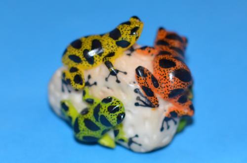 カエルが4匹描かれたタグア