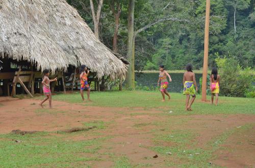 とりかごをするサッカーエンベラ族