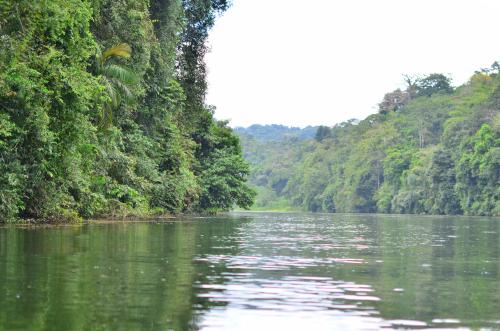 チャグレス川