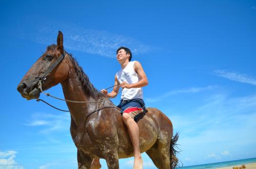 ボカスデルトロで乗馬