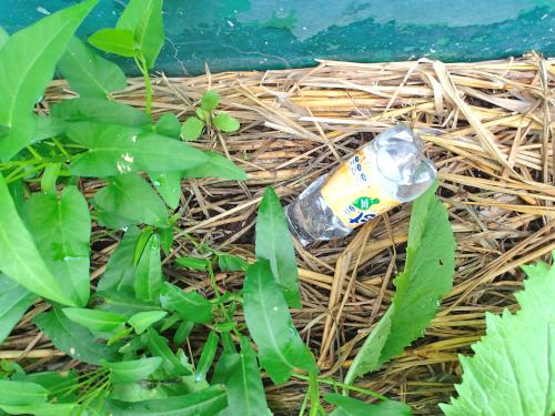 花壇に挿すペットボトル製自動水やり器