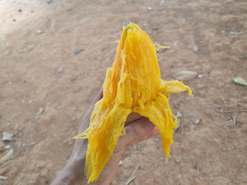 マンゴーのバナナ剥き