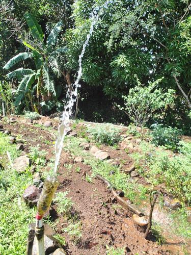 手作り散水装置