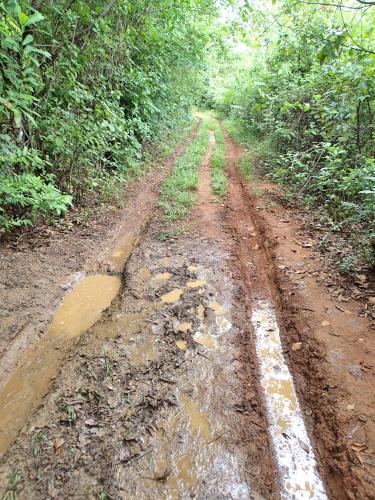 雨季の悪路