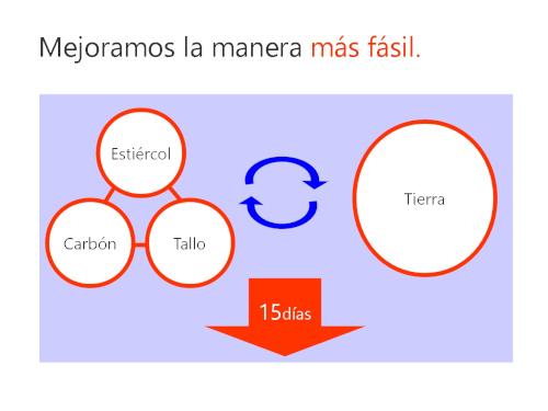 インフォグラフィック