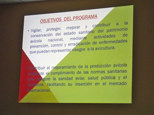パナマ人のスライド