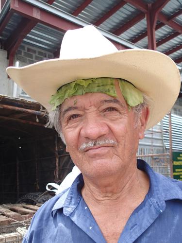 ヒゲを生やしたキャベツ帽子おじさん