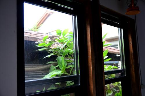 カンデラゲストハウスの窓