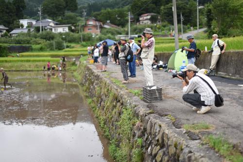 泥んこバレー大会のカメラマンたち