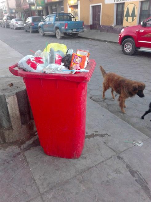 ウユニのゴミ捨てと野犬