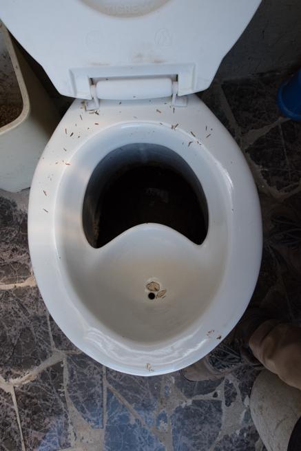 バイオトイレの便器