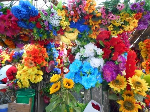 コロンビアの花