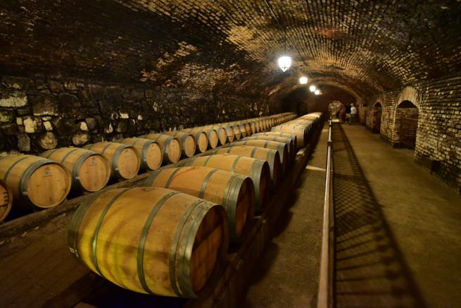 コンチャイトロのワイン倉庫