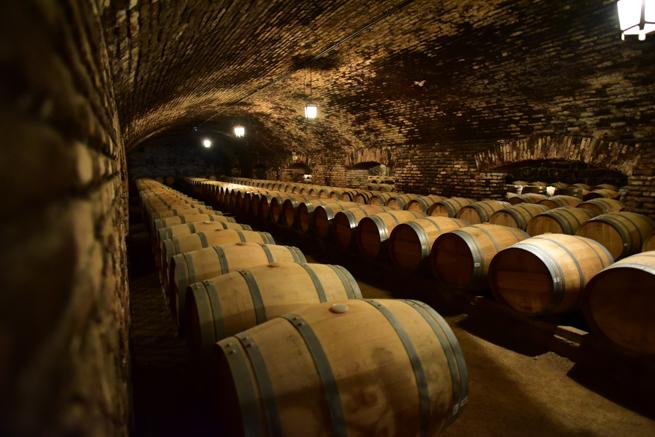 昔から使われているワイン蔵
