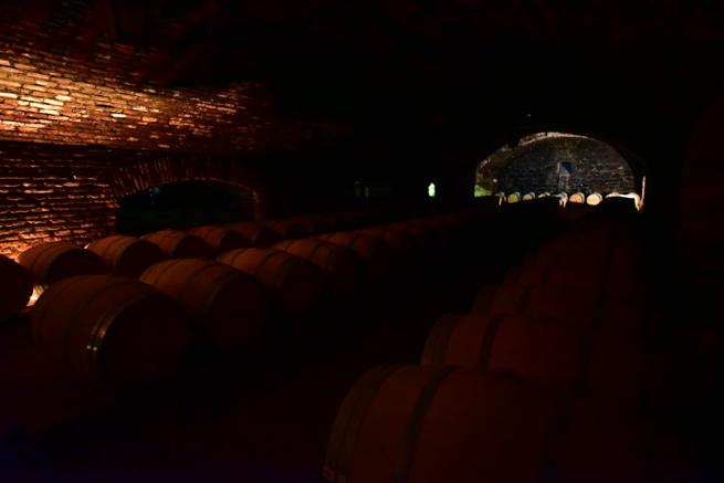 真っ暗なワイン蔵