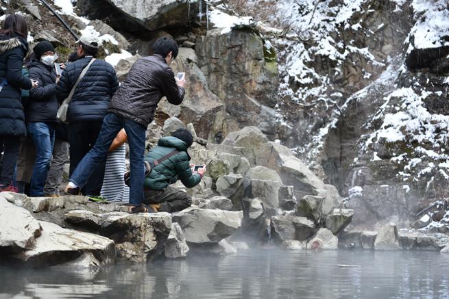 スノーモンキーを撮影する観光客