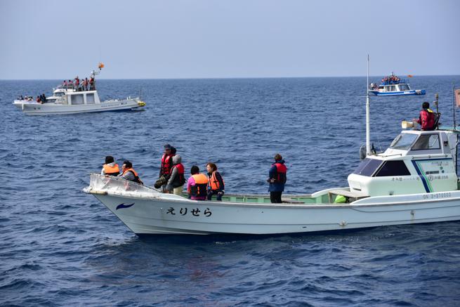 鯨を探している船
