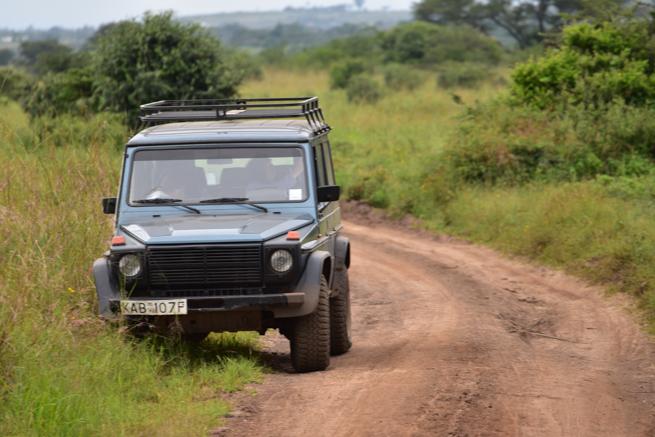 ナイロビ国立公園のゲームドライブ