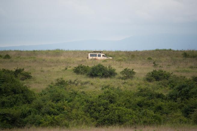 ナイロビ国立公園を走るサファリカー