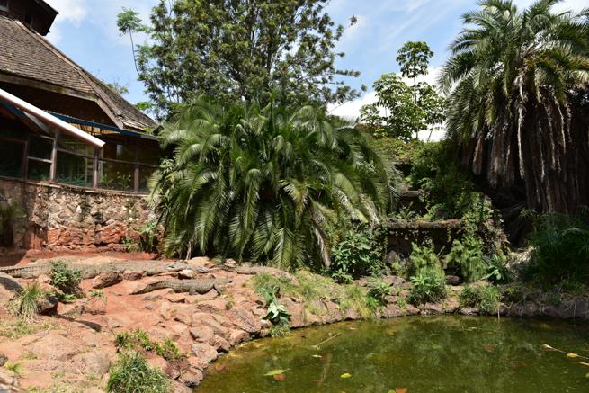 ナイロビにあるワニ園