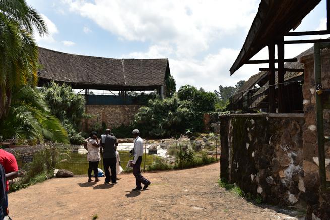 ナイロビのワニ園
