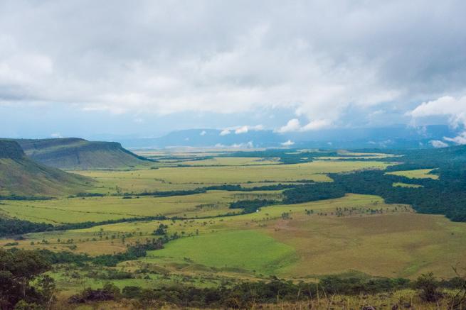 雨が止んだカナイマ国立公園