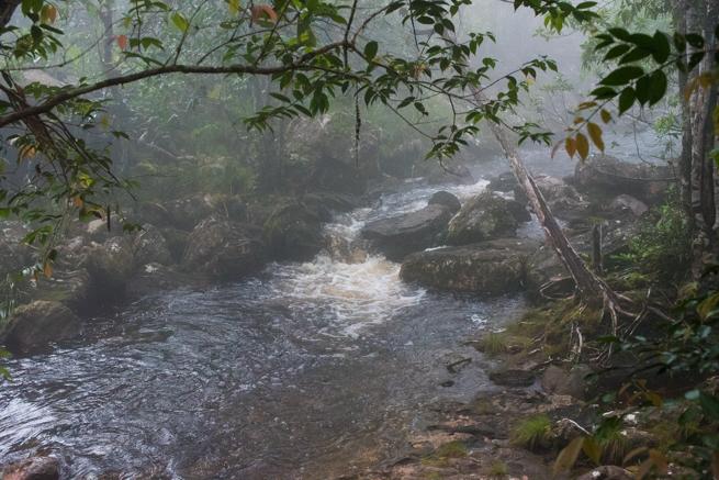 アウヤンテプイトレッキングの初日の川